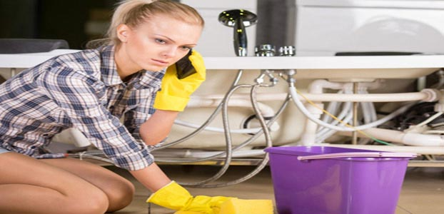 plumbing service Delbrook
